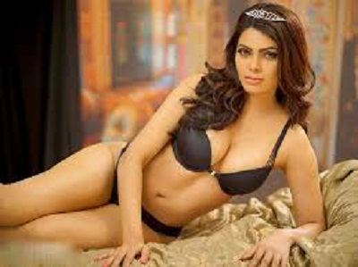 Sherlyn Chopra claims, Raj Kundra used to do dirty work for Rs 30 lakh